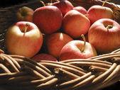 Cesta de fruta 01 — Foto de Stock