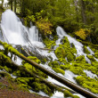Clearwater Falls - Umpqua Scenic Byway — Stock Photo