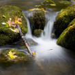 Flowing Water Mountain Stream — Stock Photo
