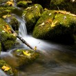 Stock Photo: Flowing Water Mountain Stream