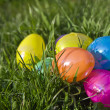 Easter Eggs in the Grass - Stock Photo