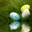 Painted Easter Eggs Reflecting in Water - Stock Photo