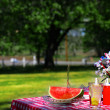 Old Fashioned Picnic - Stock Photo