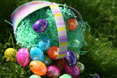Easter Eggs and Basket — Stock Photo