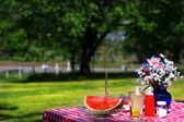 Old fashioned picknick — Stockfoto