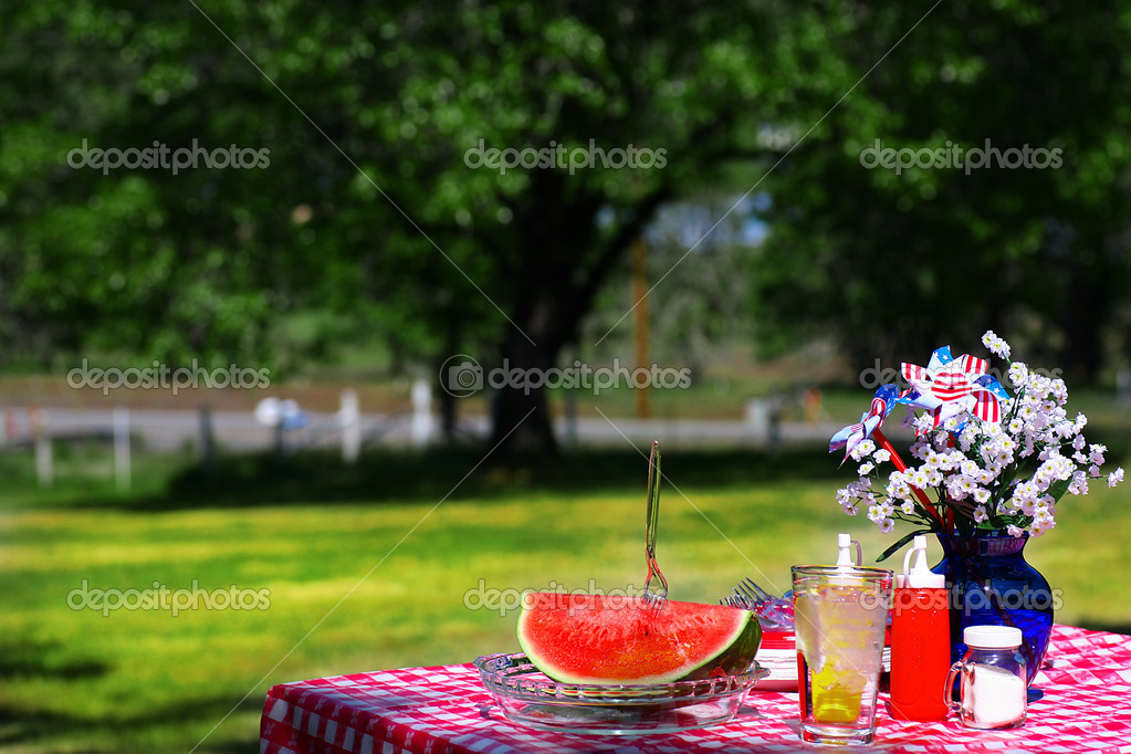 Old Fashioned Picnic with Watermelon — Stock Photo #2553536