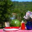 Stock Photo: Old Fashioned Picnic