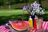 Old Fashioned Summer Picnic — Stock Photo