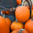 Stock Photo: Pumpkin Wagon