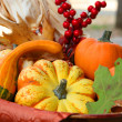Thanksgiving Harvest Basket — Stock Photo