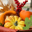 Thanksgiving Harvest Basket - Stock Photo