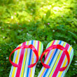 Flip Flops in Grass — Stock fotografie