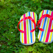 Flip Flops in Grass — Stock Photo #2615600