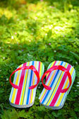 Slippers in gras — Stockfoto