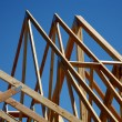 Stock Photo: Trusses - New Home Construction