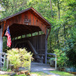 Lost Creek Historic Bridge - Stock Photo