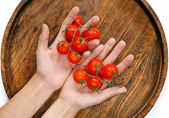 Cherry tomatoes in hands — Stock Photo