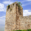 Tower of ancient fortification — Stock Photo