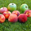 Peaches and apples — Stock Photo
