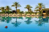 Palmy a lehátka u bazénu — Stock fotografie