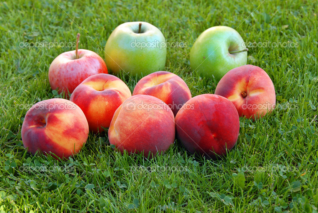 Red peaches and green apples in grass outdoor  Stock Photo #2606277