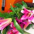 Pink lily guitar composition — Stock Photo