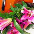 Royalty-Free Stock Photo: Pink lily guitar composition