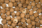Many walnuts are on a white background — Stock Photo