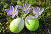 Easter Eggs2 — Stock Photo