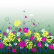 Spring meadow with flowers and sky — Stock Photo