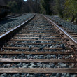 Miller Park Railroad Tracks Off into the Dark Wo — Stock Photo #2524881