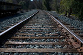 Miller Park Railroad Tracks Off into the Dark Wo — Stock Photo