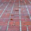 Perspective brick walkway - Stock Photo