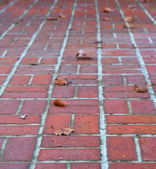 Perspective brick walkway — Stock Photo