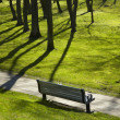 Shadows in park — Stock Photo