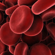 Royalty-Free Stock Photo: Red blood cells