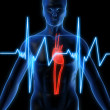 Royalty-Free Stock Photo: Heartbeat