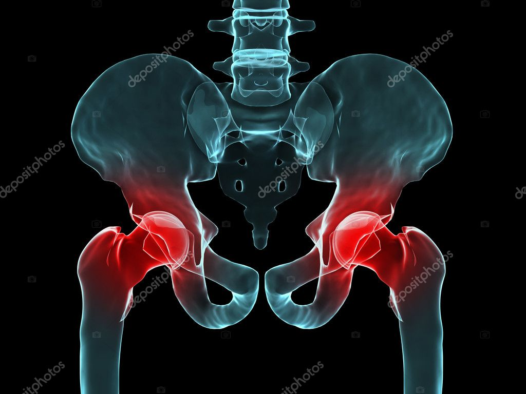 3d rendered of a human skeletal hips with highlighted joint — Stock Photo #2629200
