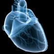 X-ray heart — Stock Photo