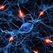 Foto Stock: Active nerve cell