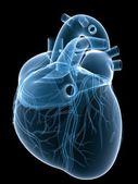X-ray heart — Stock Photo