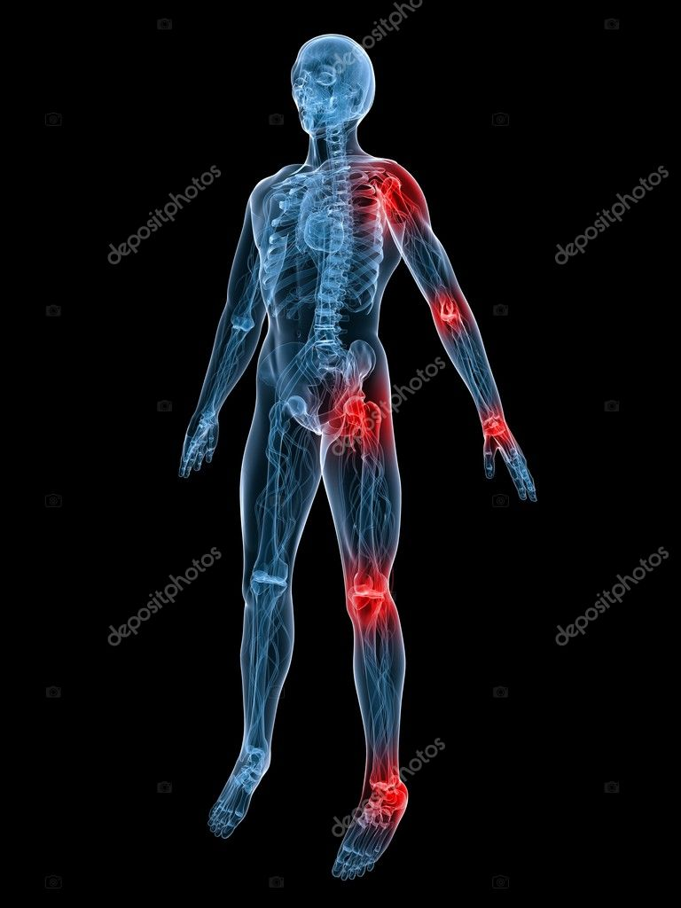 3d rendered illustration of a transparent body with highlighted joints  Stock Photo #2633731