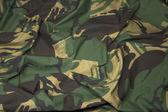 Camouflage Fabric 1 — Stock Photo