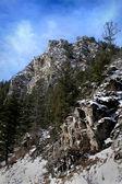 New mexico mountain peak — Stock Photo