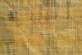 Egyptian papyrus texture — Stock Photo