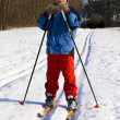 Ski walk — Stock Photo