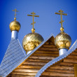Gold domes - Stock Photo