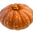 A pumpkin against a white background — Stock Photo