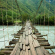Hanging bridge — Photo #2565981