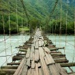 Hanging bridge - Stock Photo